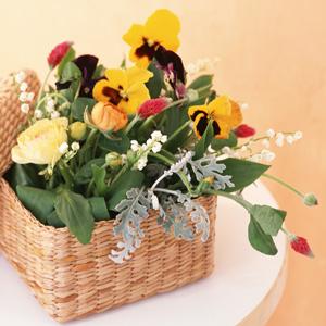 水子供養花